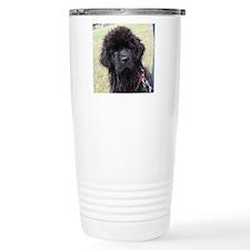 big day out 240 Travel Coffee Mug