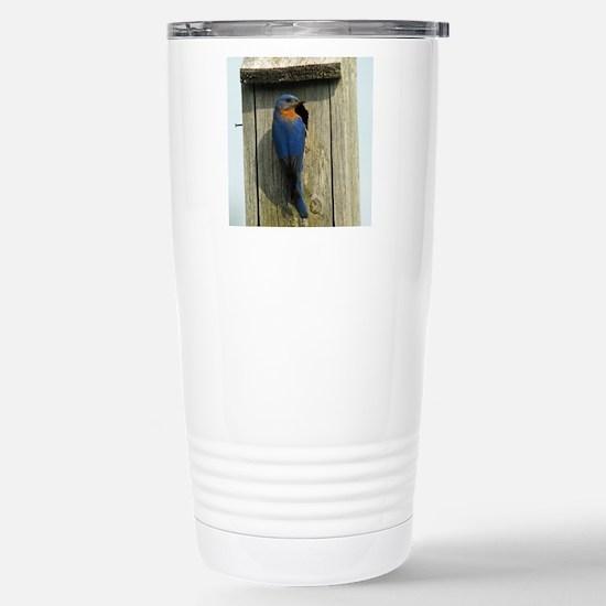 11x11_pillow 3 Stainless Steel Travel Mug