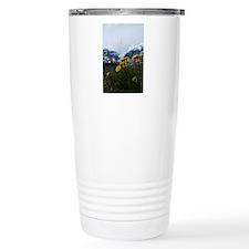 DSC_0124_3 Travel Mug