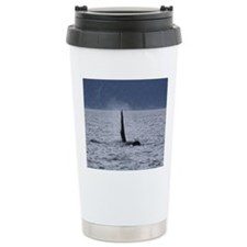IMG_3477 Travel Coffee Mug