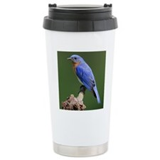 Eastern Bluebird Travel Mug