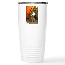 Cat Resting in a Pumpki Travel Mug