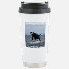 IMG_2447 - Copy Stainless Steel Travel Mug