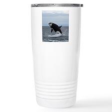 IMG_2447 - Copy Travel Coffee Mug