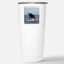 IMG_2447 - Copy Travel Mug