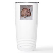 IMG_7104 - Copy Travel Mug
