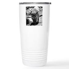 (15) Evil Pig Travel Mug