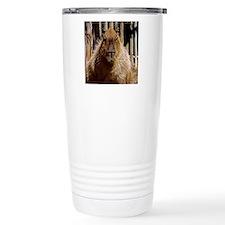 (15) Capybara Staring Travel Mug