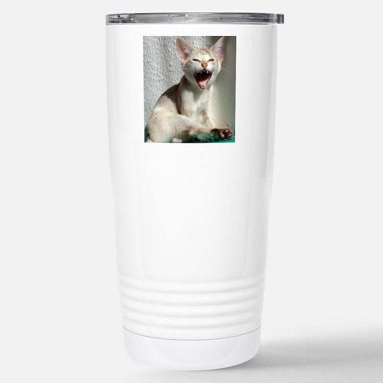 DSC_0734 Travel Mug