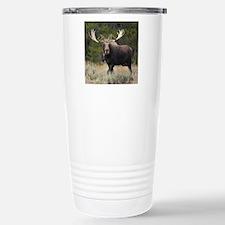 x10 Stainless Steel Travel Mug