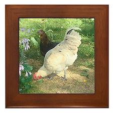 Rooster Hen Framed Tile
