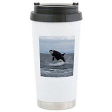 IMG_2447 - Copy Travel Mug
