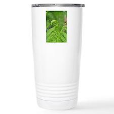 Unwinding Fern Travel Coffee Mug