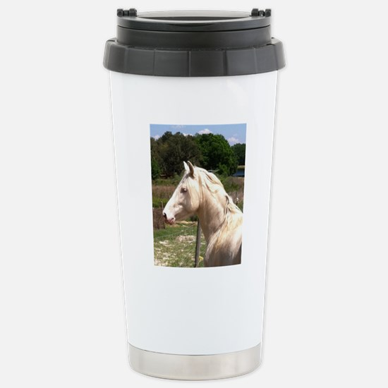 rayturnapr2crop Stainless Steel Travel Mug