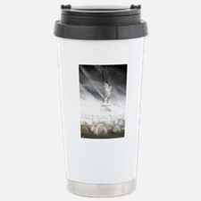 liberty chemtrails 2500 Stainless Steel Travel Mug