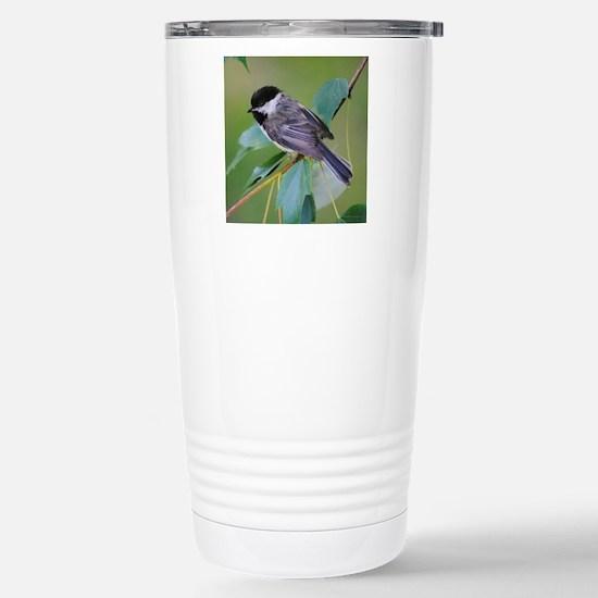 10x10_chickadee Stainless Steel Travel Mug