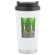 LTTn10.526x12.885(203)a Travel Mug