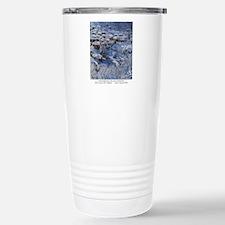 M0018 2009.11.20 kovatc Travel Mug