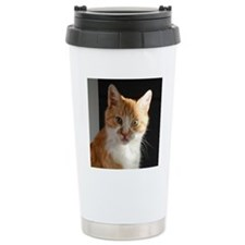 DSC_0754editcrop Travel Mug