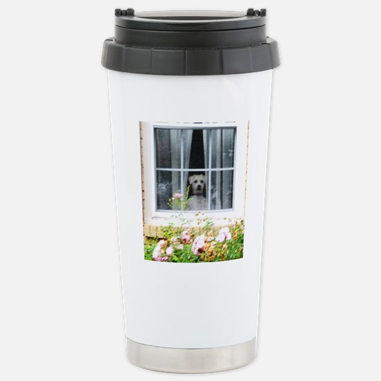 Zak in the windowA Stainless Steel Travel Mug