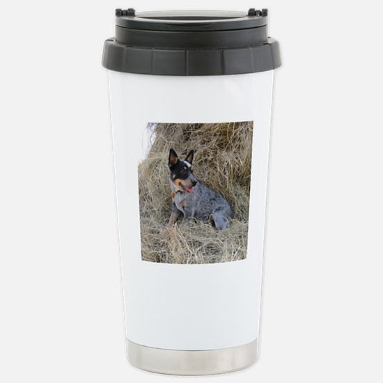 Australian Blue Heeler  Stainless Steel Travel Mug