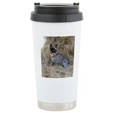 Australian Blue Heeler  Travel Mug