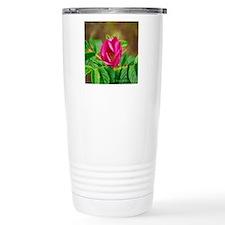 217-21 Travel Mug