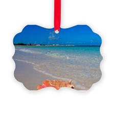 Turks & Caicos Club, Providencial Ornament