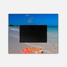 Turks & Caicos Club, Providenciales, Picture Frame