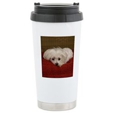 MalteseShower2 Travel Coffee Mug