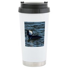 hooded merganser 2nd cr Travel Mug