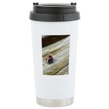 FF_P1000706 Travel Mug