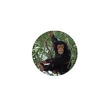 Cute Primates Mini Button