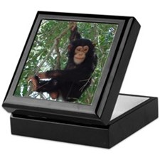 Cute Primates Keepsake Box