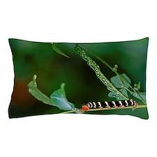 Saint Lucia. Colorful Caribbean caterp Pillow Case