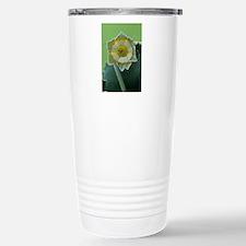 Show auricula 'Greenpea Travel Mug