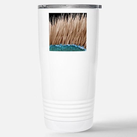Seal fur, SEM Stainless Steel Travel Mug