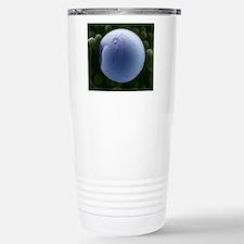 PLGA biomedical device, Stainless Steel Travel Mug