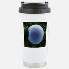 PLGA biomedical device, Travel Mug