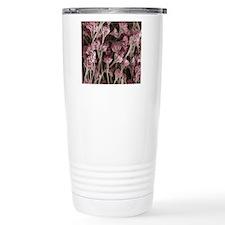 Penicillium fungus, SEM Travel Mug