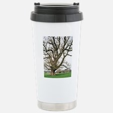 Oak tree Stainless Steel Travel Mug