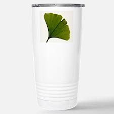 Leaf of Ginkgo biloba Travel Mug