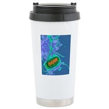 Escherichia coli bacter Travel Coffee Mug