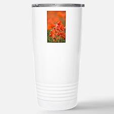 Common poppies (Papaver Travel Mug