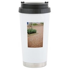 A paved garden, Sweden. Travel Mug