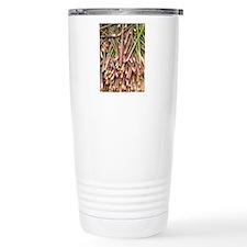 Bamboo shoot Travel Coffee Mug