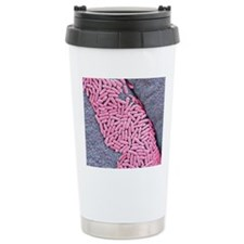 E coli bacteria, SEM Travel Mug