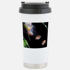 Water flea giving birth Travel Mug
