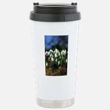 Snowdrops (Galanthus sp Stainless Steel Travel Mug