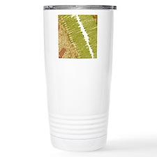 Intestinal microvilli,  Travel Mug